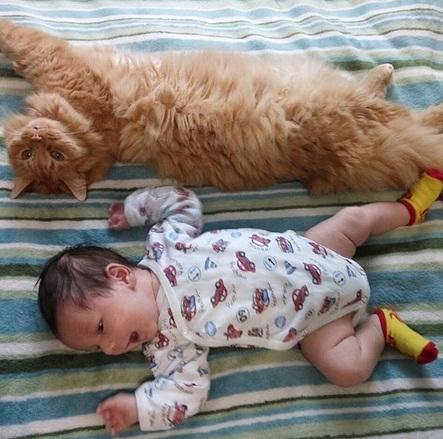 Первые дни новорожденного дома. Кормление. Гигиенические процедуры.