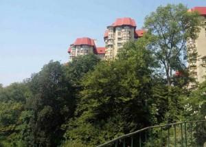 Отдых в Сочи. На Вишнёвой улице крыши домов вишнёвого цвета